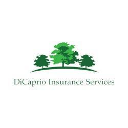 DiCaprio Insurance Services
