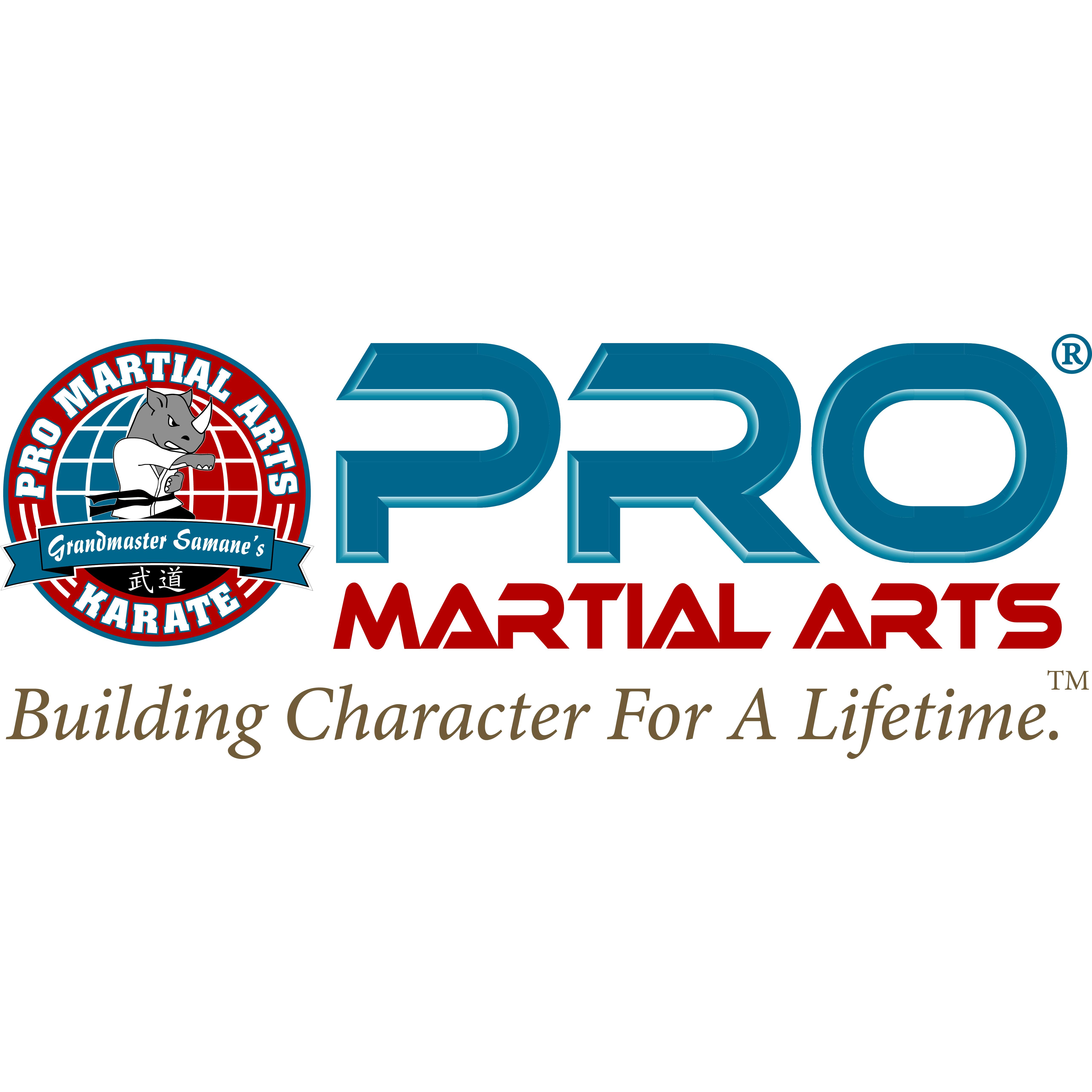 PRO Martial Arts Marietta and East Cobb