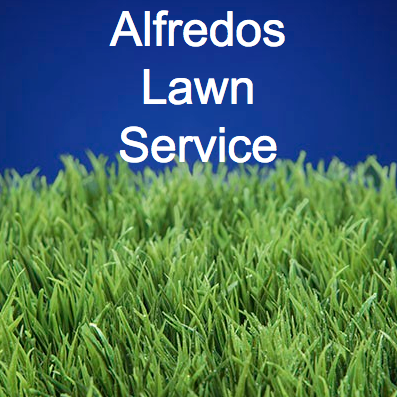 Alfredos Lawn Service image 6