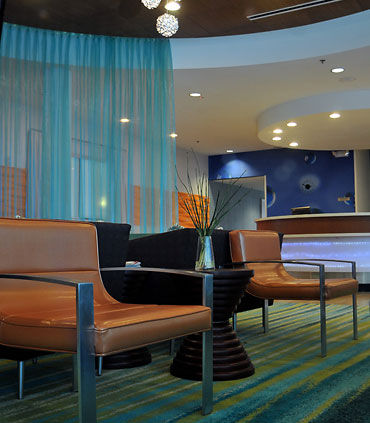 SpringHill Suites by Marriott McAllen Convention Center image 6