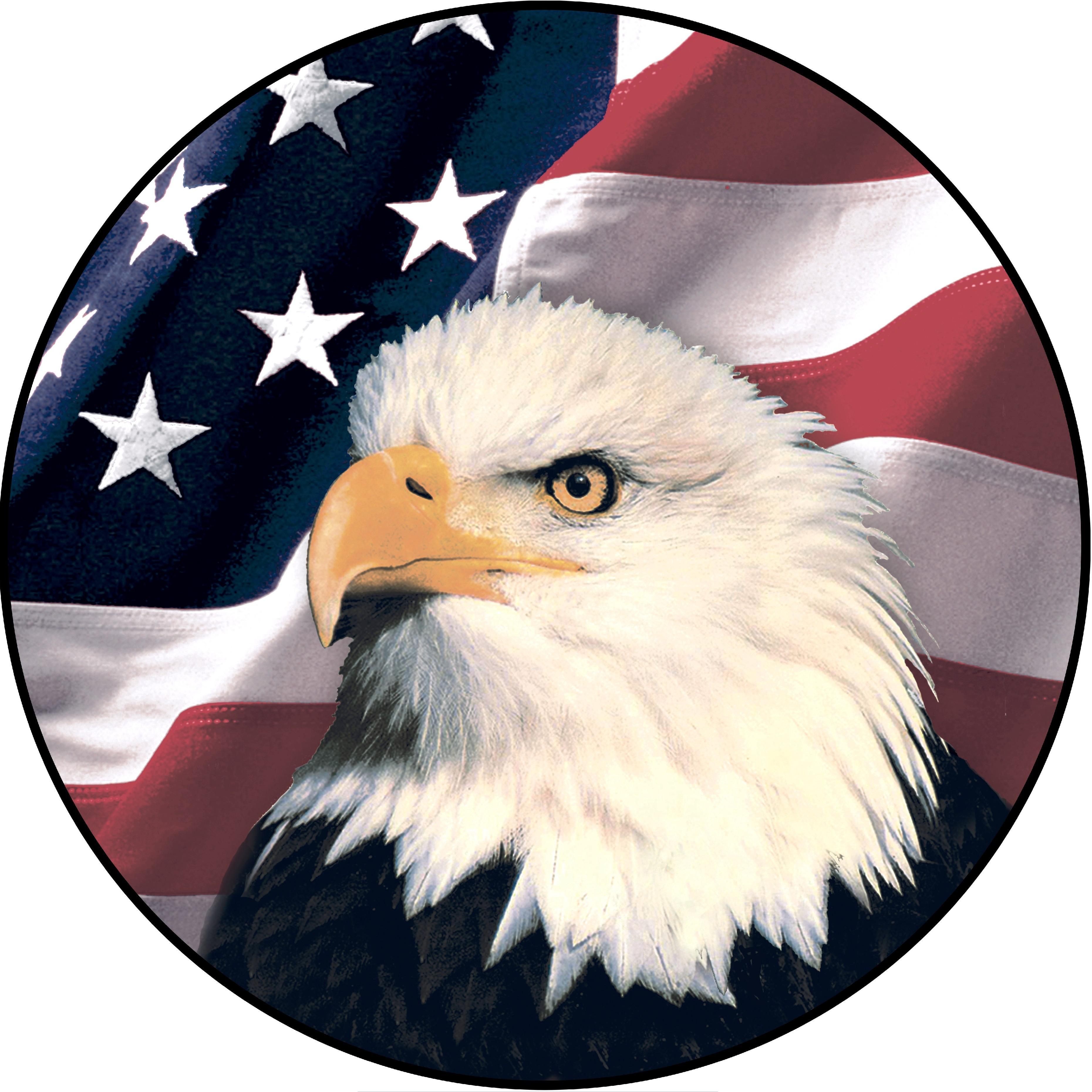 American Eagle Tree Service