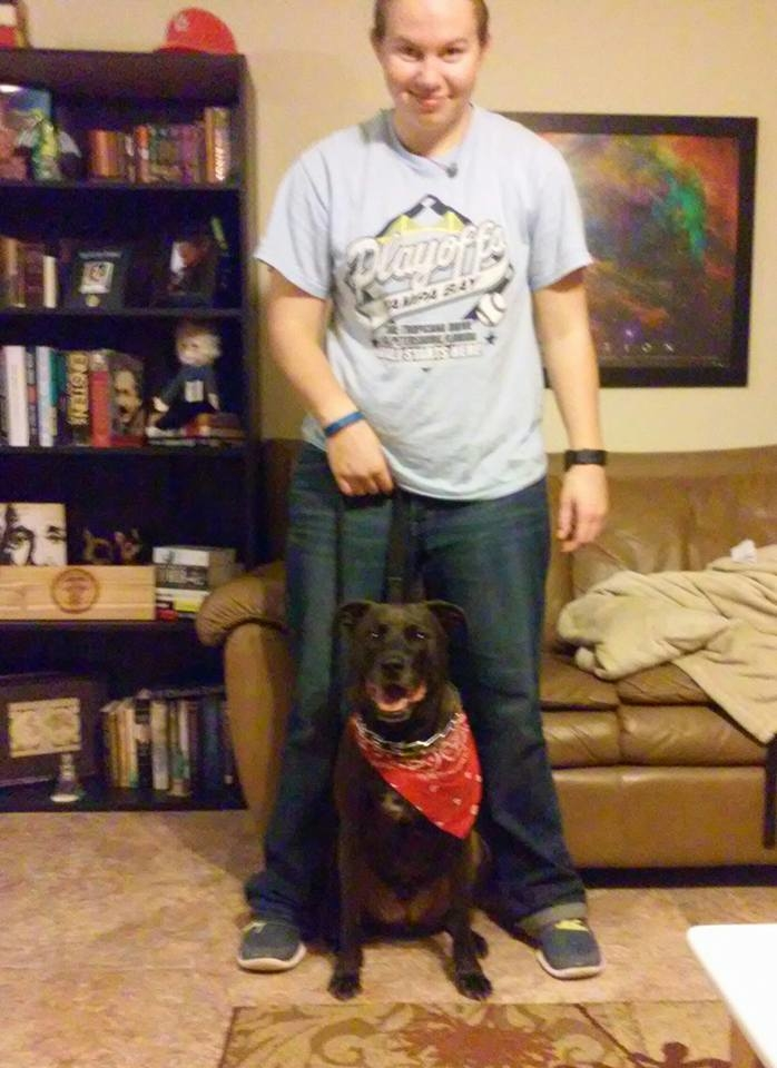 The Dog Man - Pro Dog Training image 4