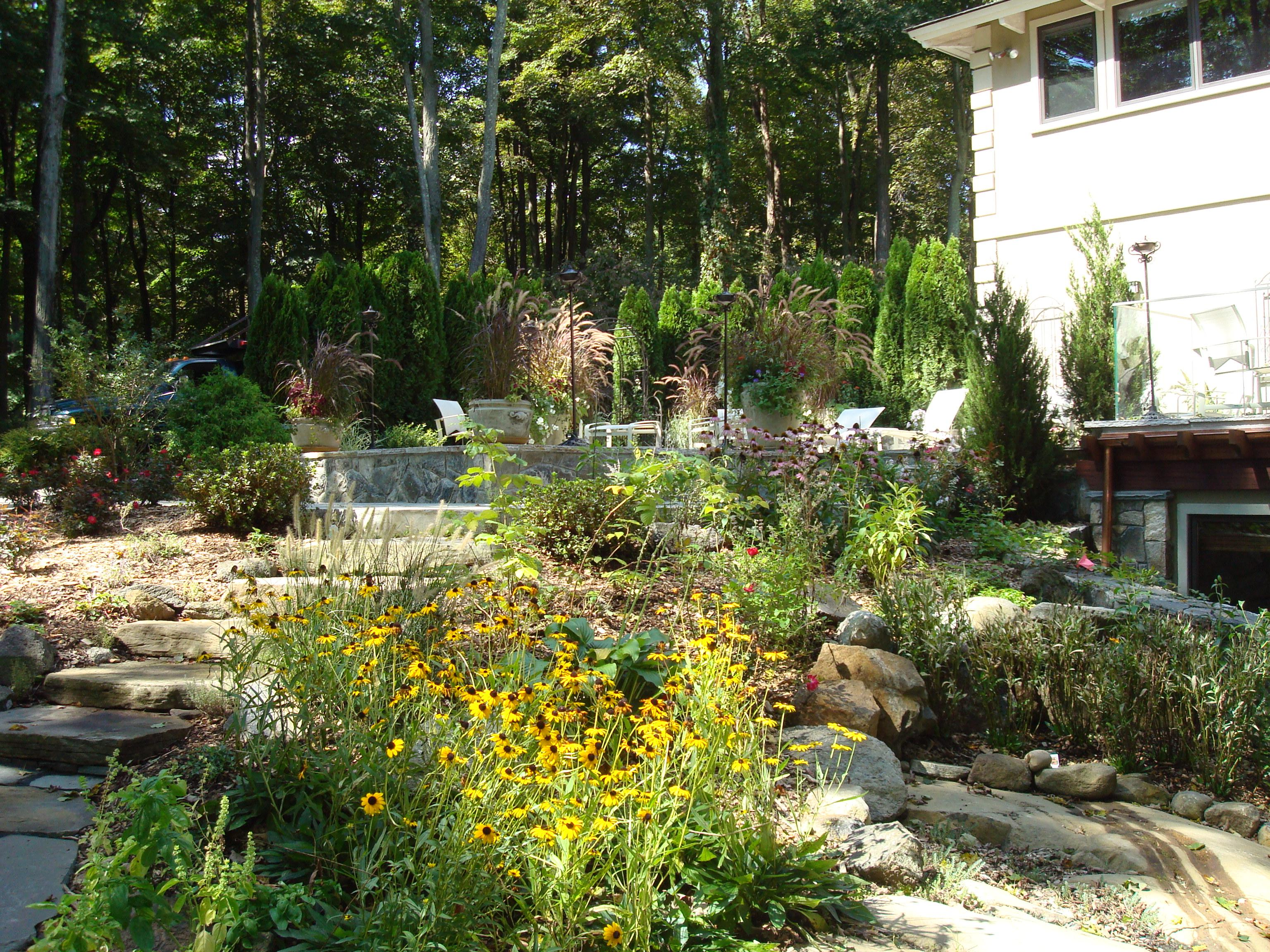 Natural stone, and plant selections that use native plants soften the environment and invite you in for a stroll.