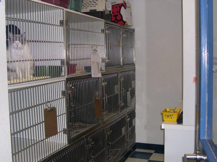 VCA American River Animal Hospital in Orangevale, CA, photo #6