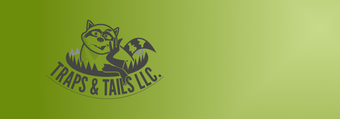Traps and Tails, llc image 2
