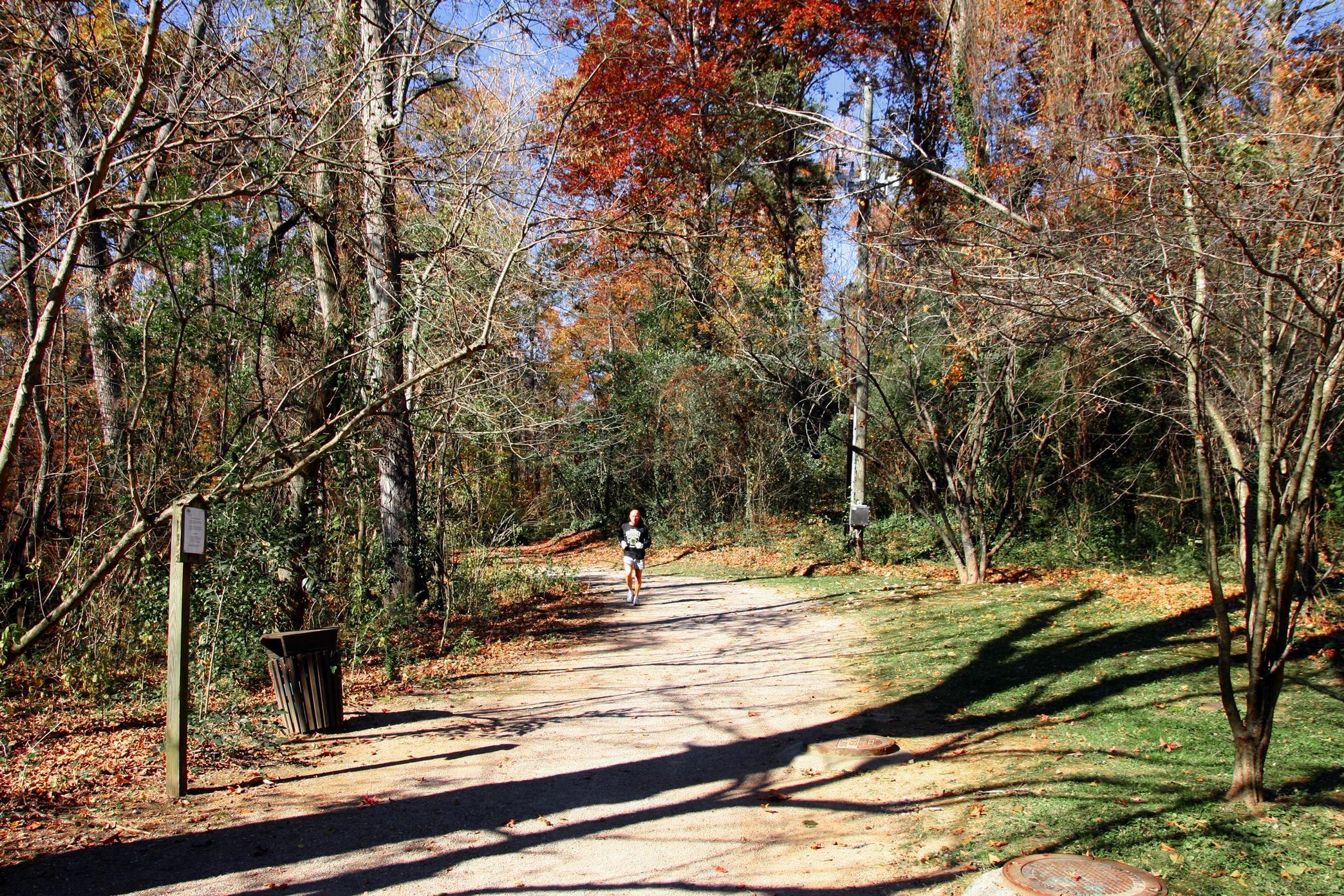 Running Trail in the Fall