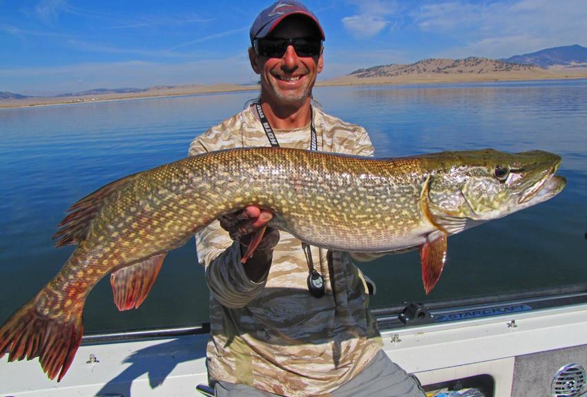 Colorado Adrenaline Fishing image 15