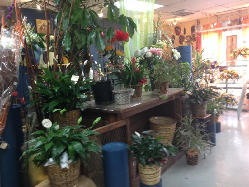 L'Aristocrate Fleuriste & Boutique Cadeaux Inc à Saint-Constant