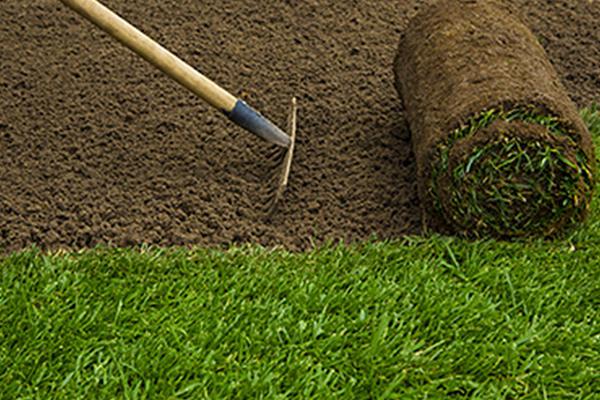 Alfredo Olvera Landscaping image 0