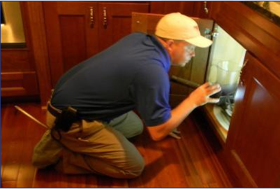 Professional Termite & Pest Services LLC image 3