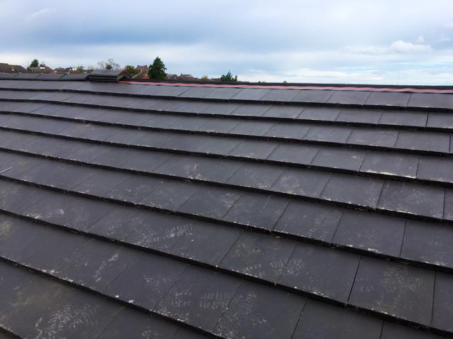 Lovely Omega Roofing