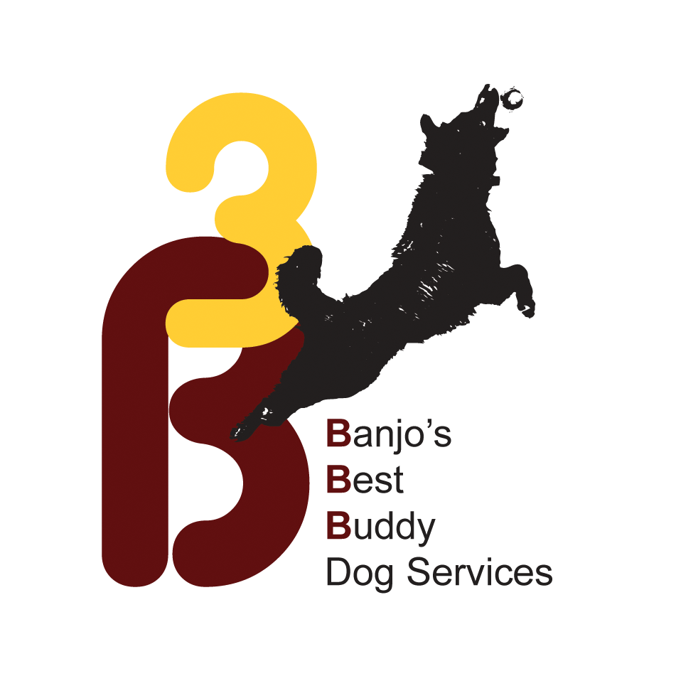 B3 Dog Services - Jacksonville, FL 32224 - (904)401-0116 | ShowMeLocal.com