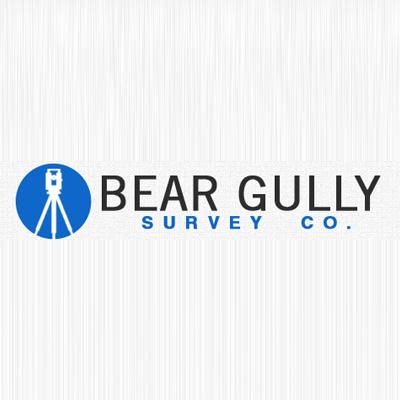 Bear Gully Survey Co. image 0