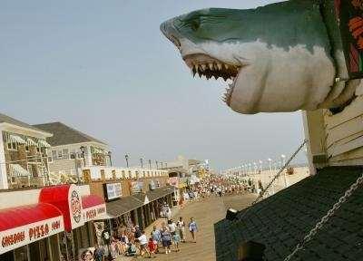 Best Western Ocean City Hotel & Suites image 44