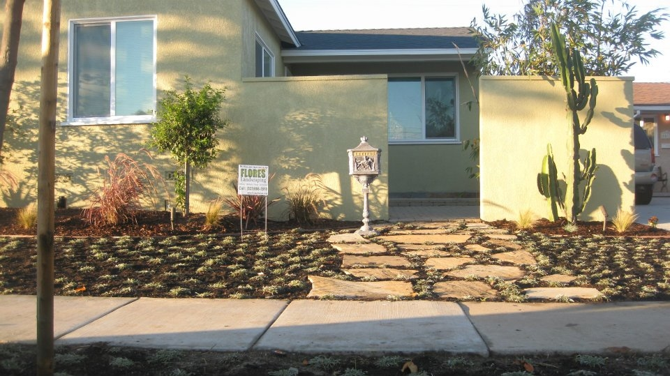 Flores Landscaping image 19