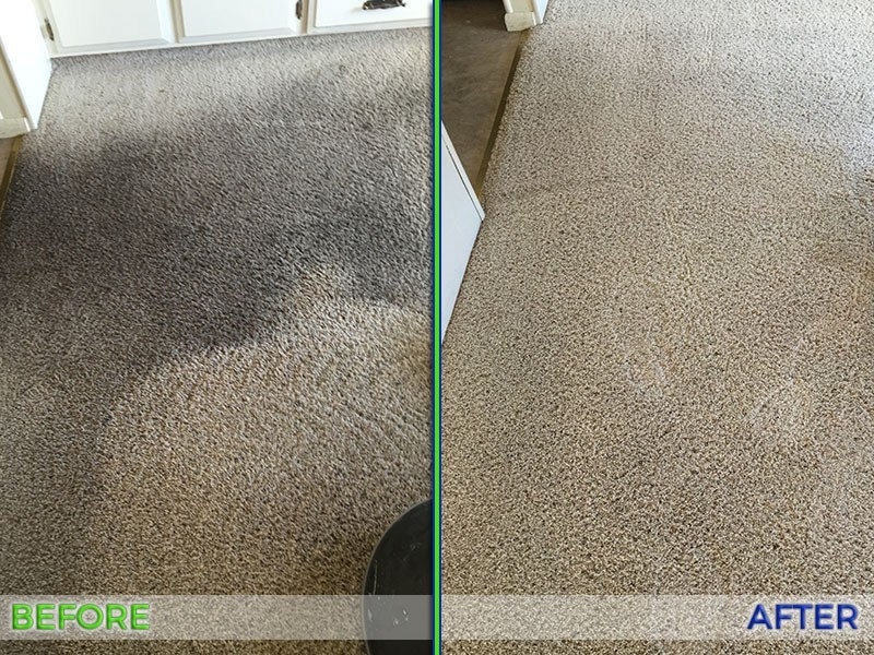 Full Circle Carpet and Upholstery Cleaning image 7