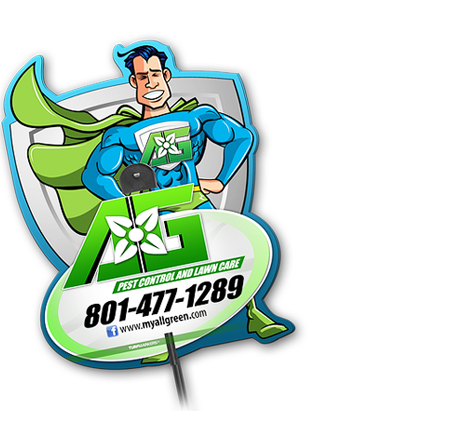 All Green Pest Control and Lawn Care image 0