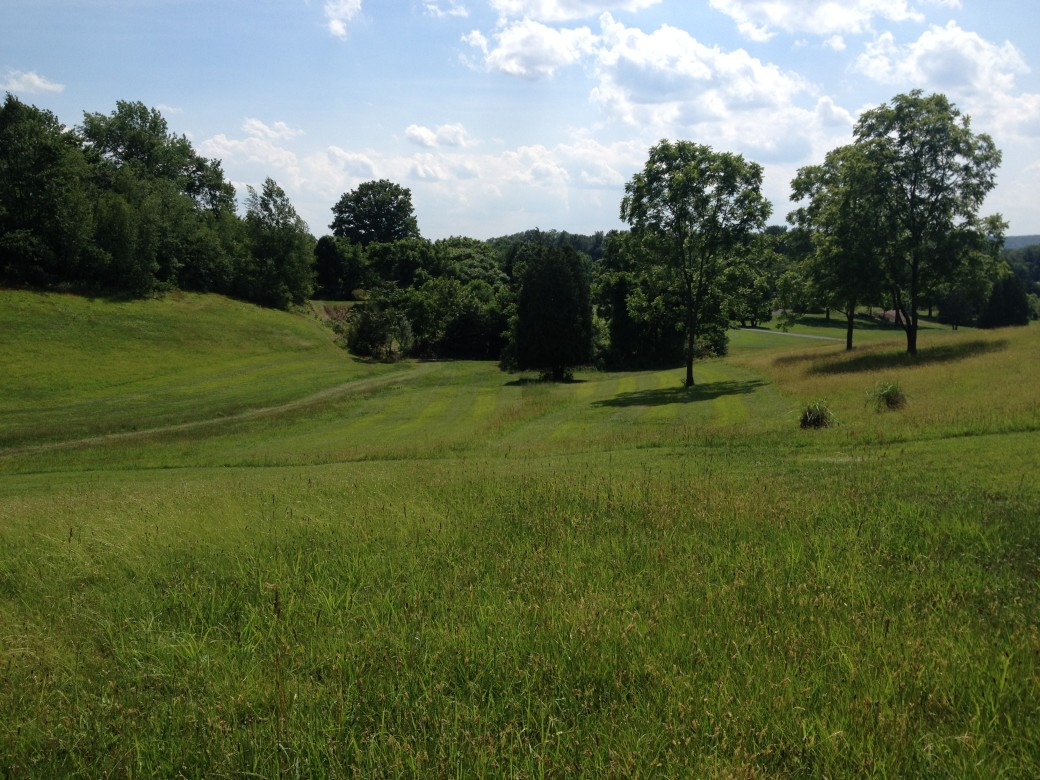 Terra Greens Golf Club image 4