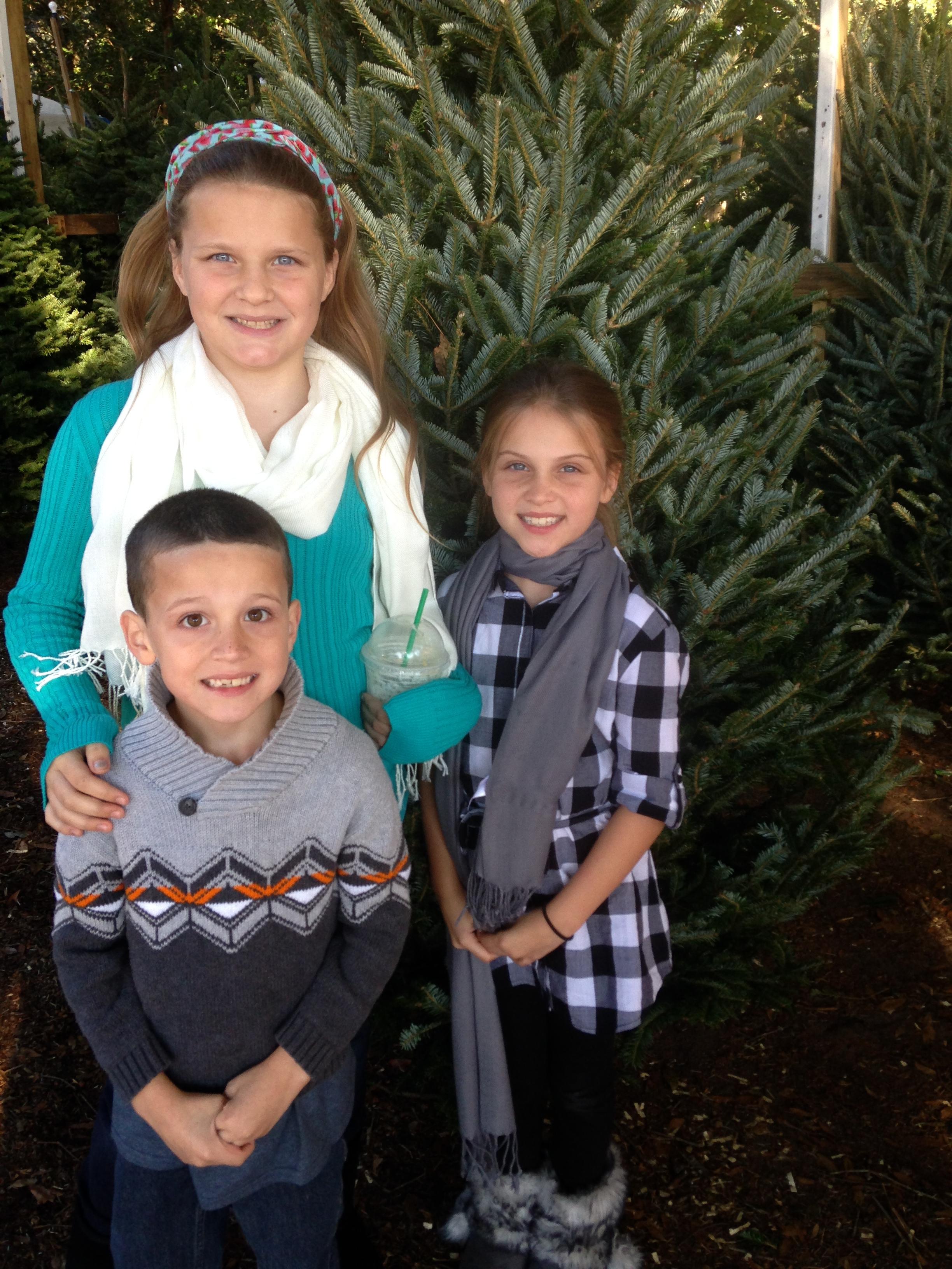 Dave's Christmas Tree Lot image 97