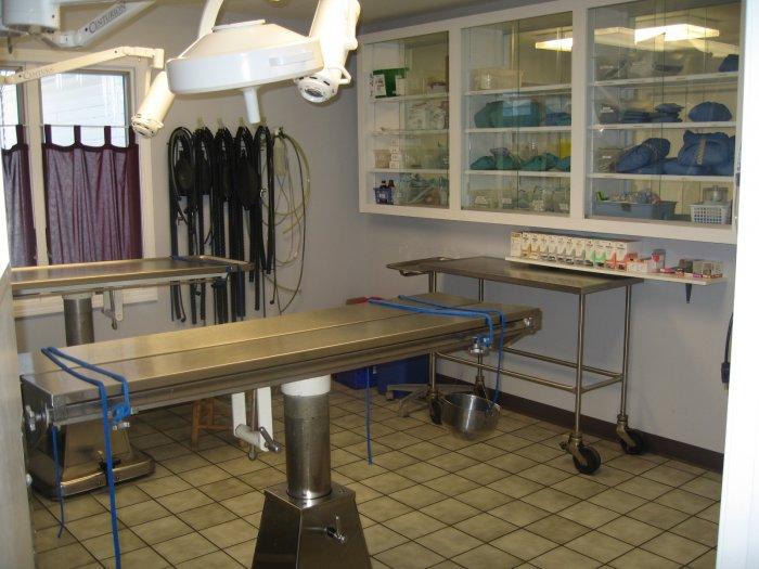 VCA Riverside Veterinary Hospital image 4