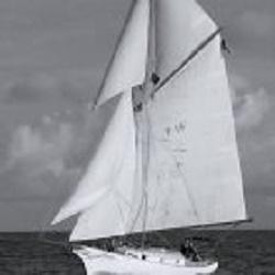 Sunset Sail Salem image 2