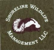 Shoreline Wildlife and Pest Control llc image 1
