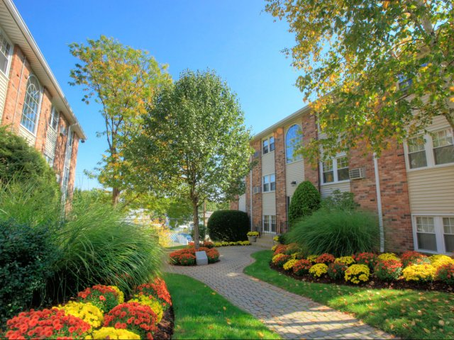 Princeton at Mount Vernon image 7