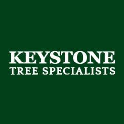 Keystone Tree Specialists