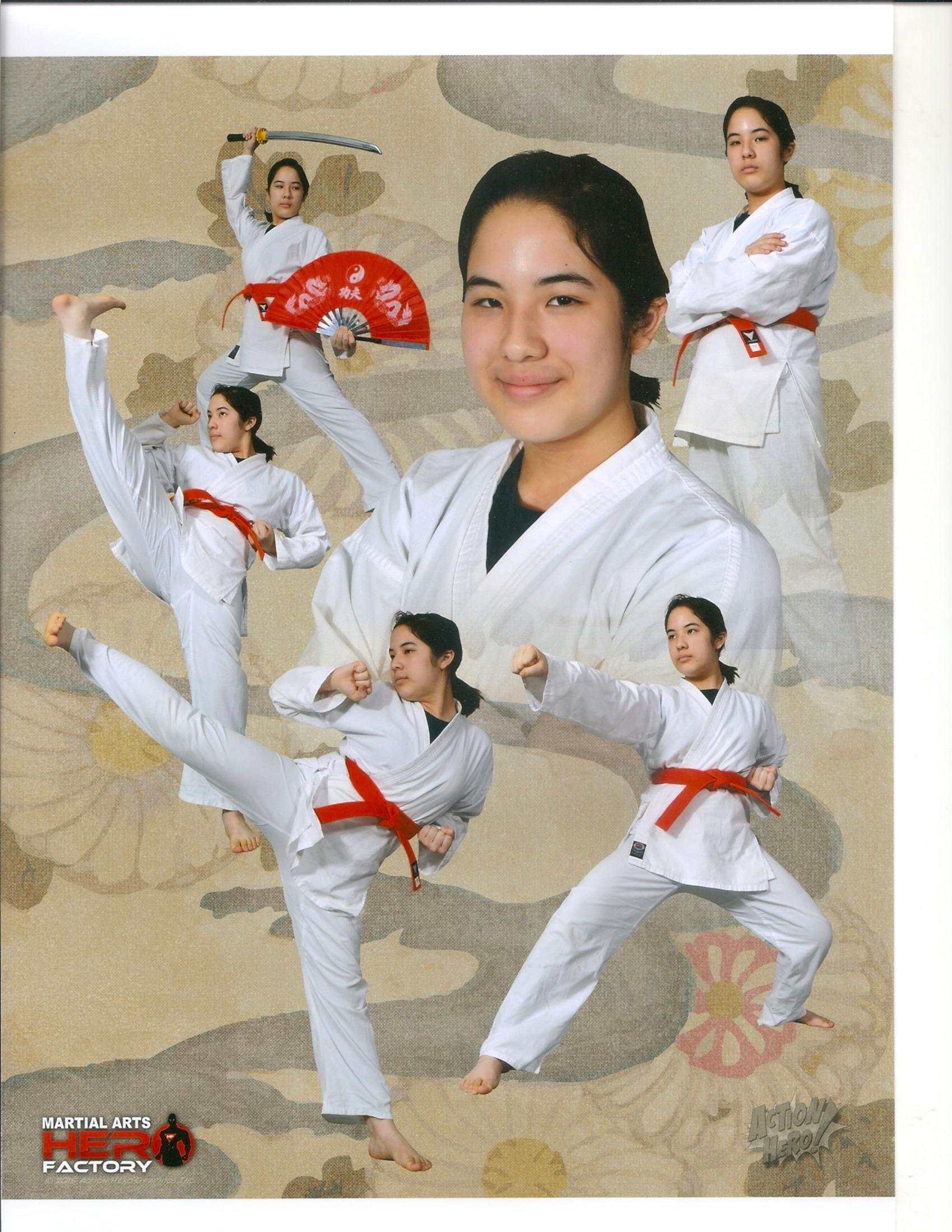 Martial Arts Hero Factory image 4