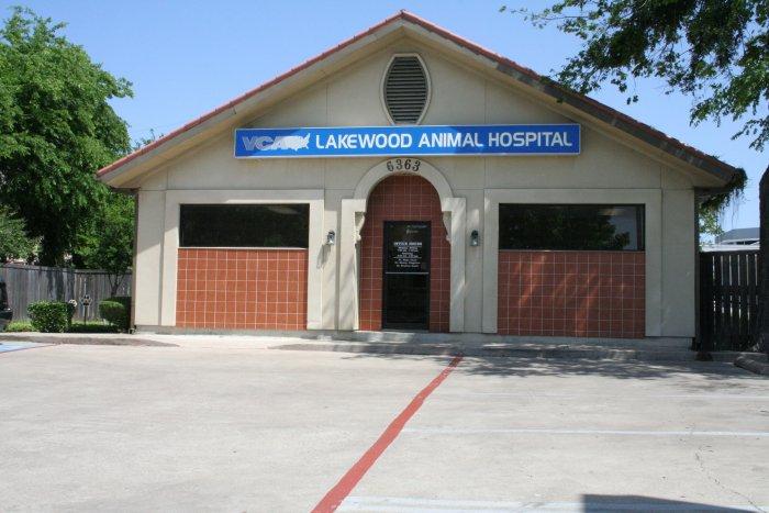 VCA Lakewood Animal Hospital image 7