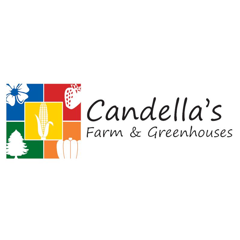 Candella's Farm & Greenhouses image 1