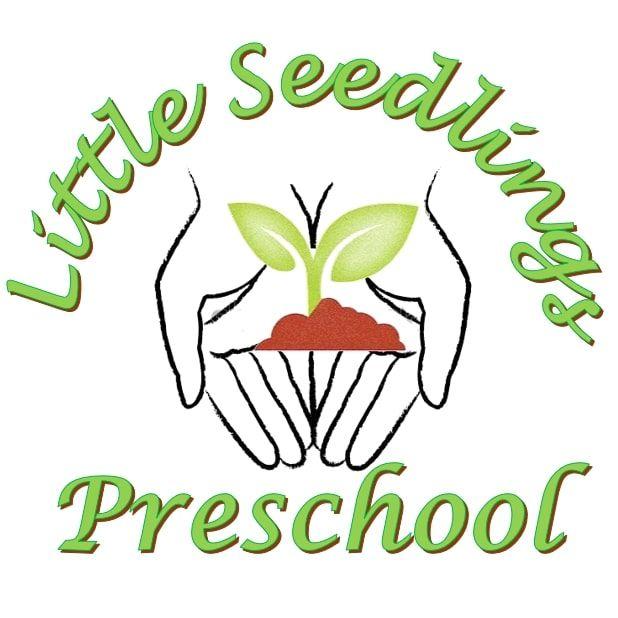 Little Seedlings Bilingual Preschool