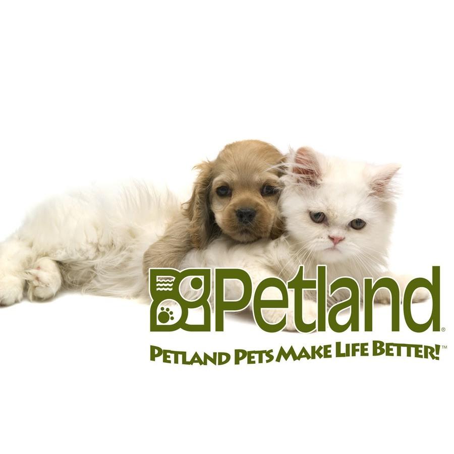 Petland Frisco image 10