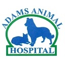 Adams Animal Hospital image 1