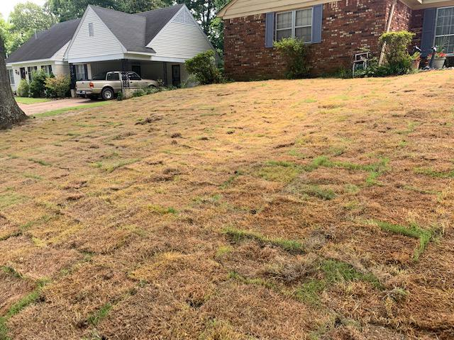 Bob's Affordable Lawn Services image 12