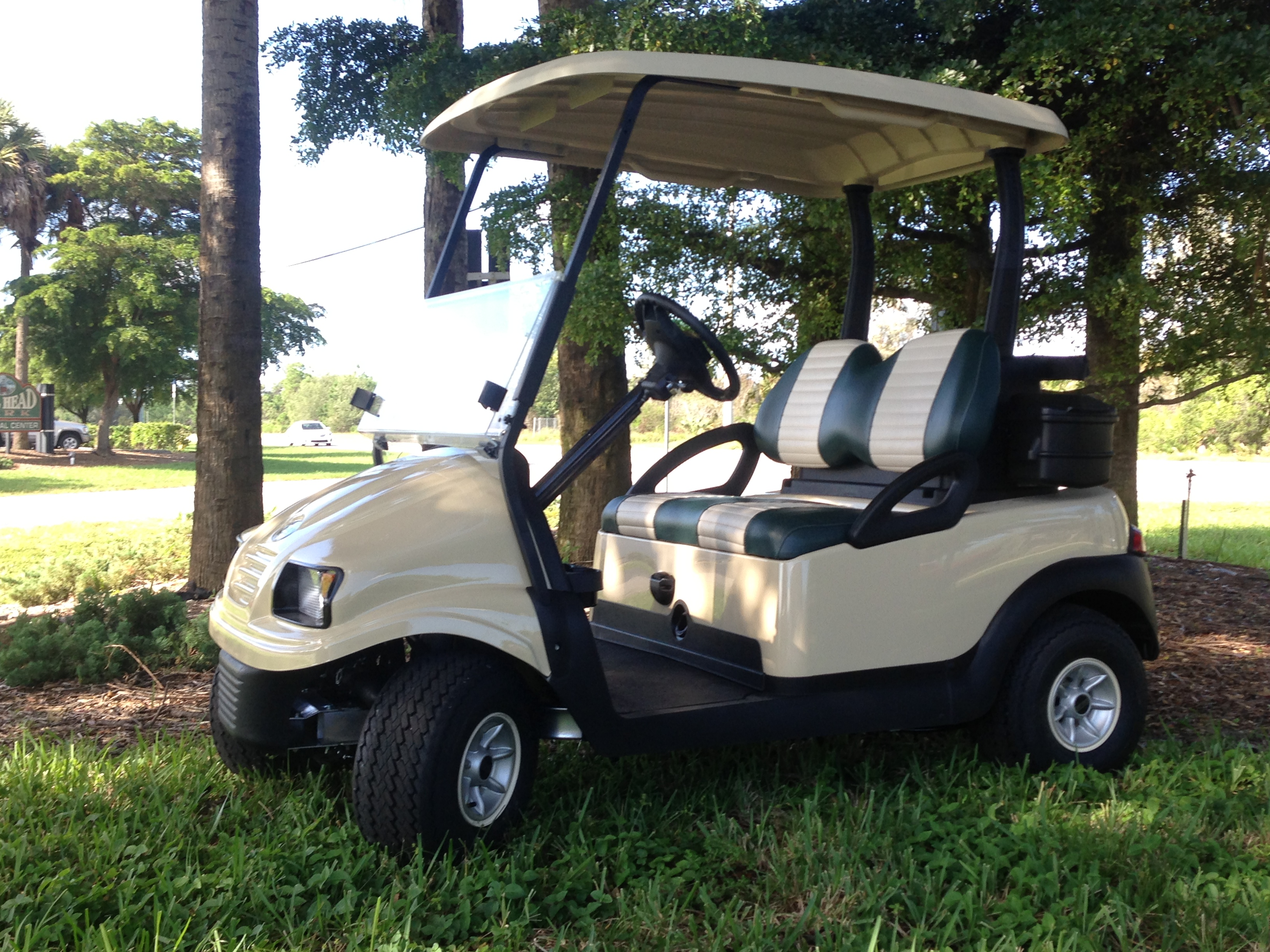 Hole In One Golf Carts image 0