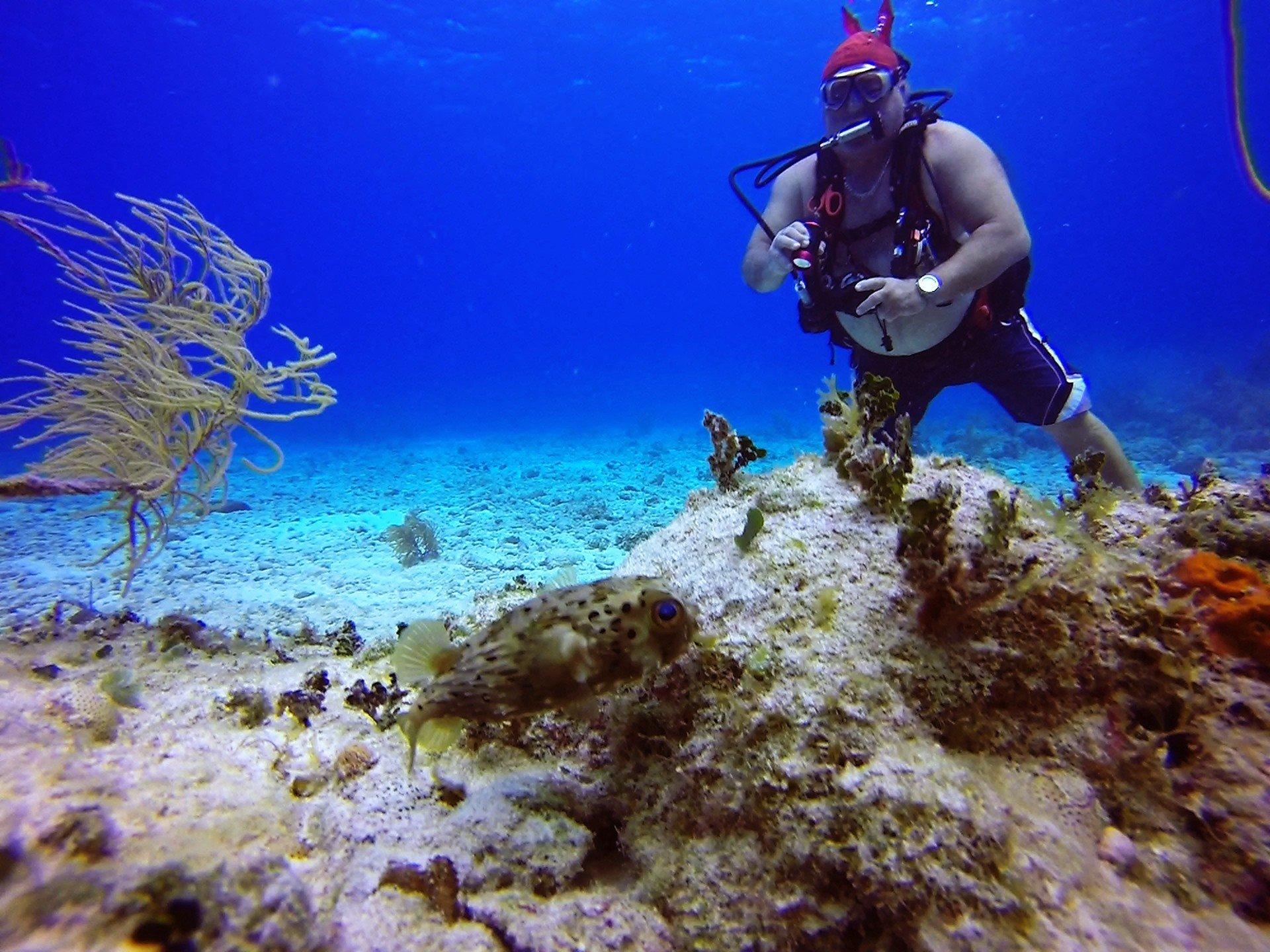 Underwater World Scuba Center image 1