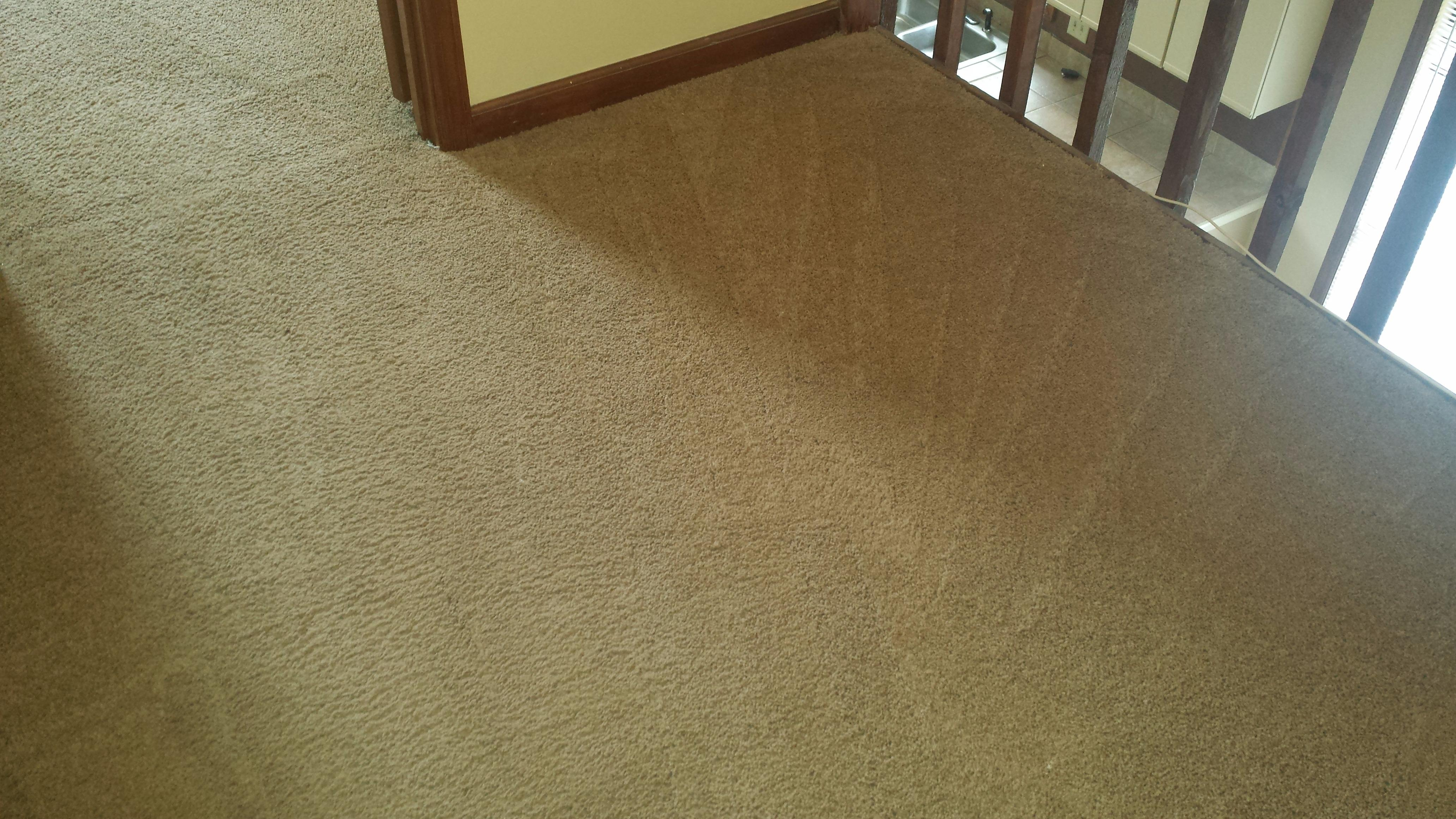 VeriClean Carpet Cleaning Coupons near me in Smyrna : 8coupons