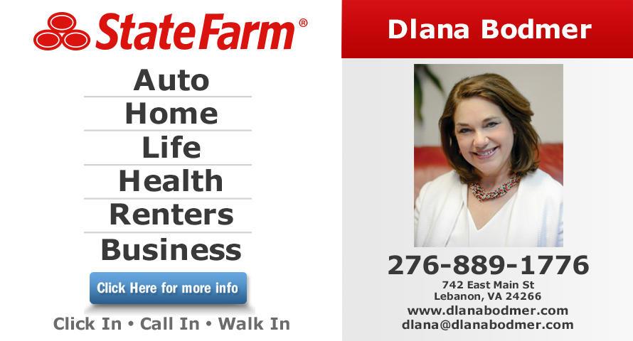 Dlana Bodmer - State Farm Insurance Agent image 0