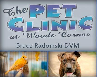 Pet Clinic at Woods Corner - Bruce Radomski DVM image 0