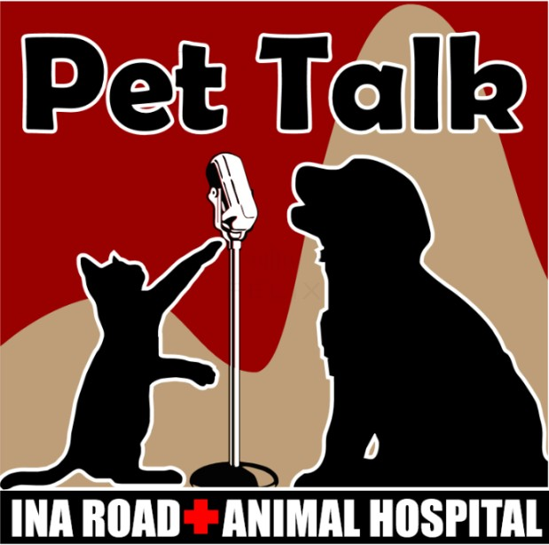 Ina Road Animal Hospital image 4