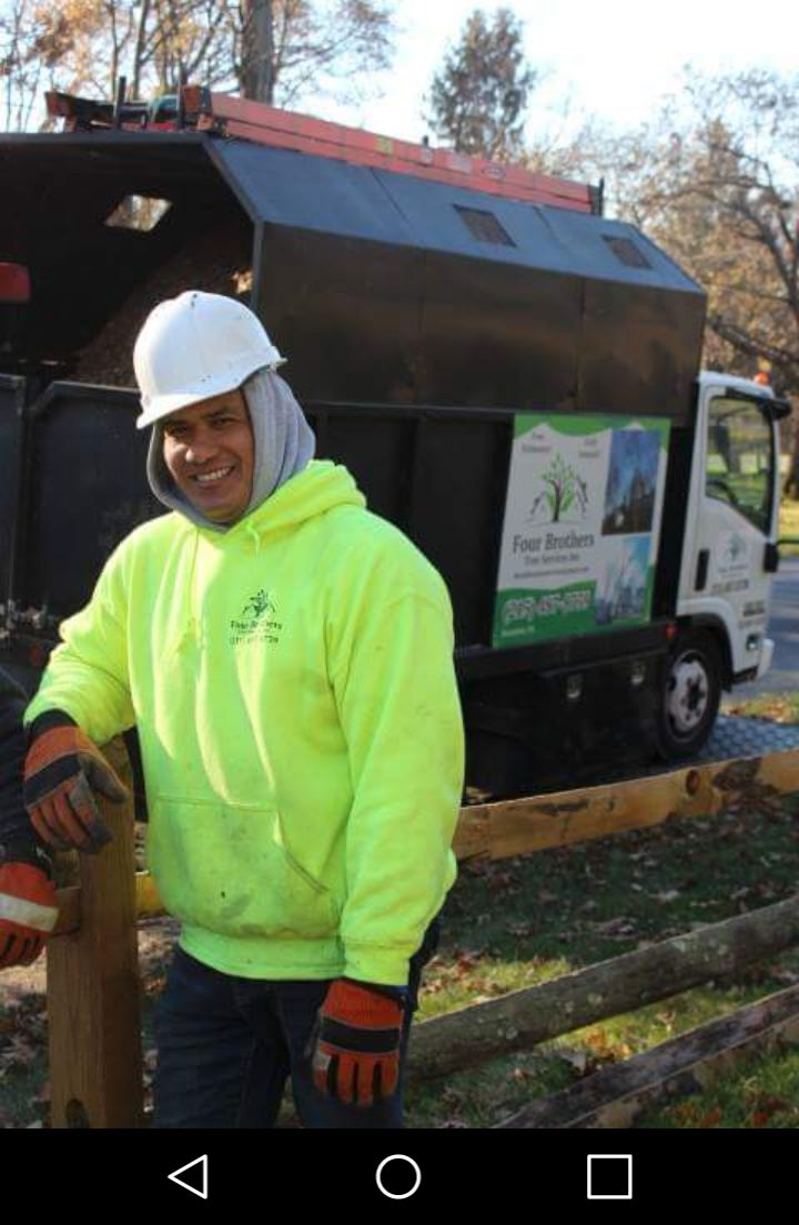 Four Brothers Tree Service Inc. image 12