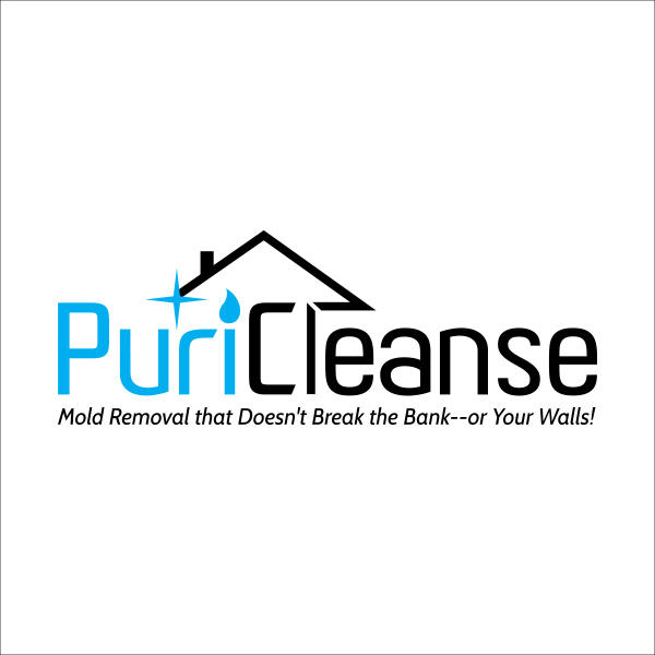 Puricleanse - Annapolis