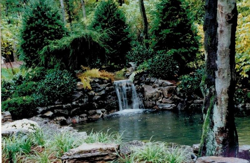 Robert Bradley Landscaping image 3