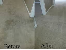 Full Circle Carpet and Upholstery Cleaning image 10