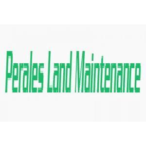 Perales Land Maintenance
