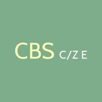 CBS Construction Inc