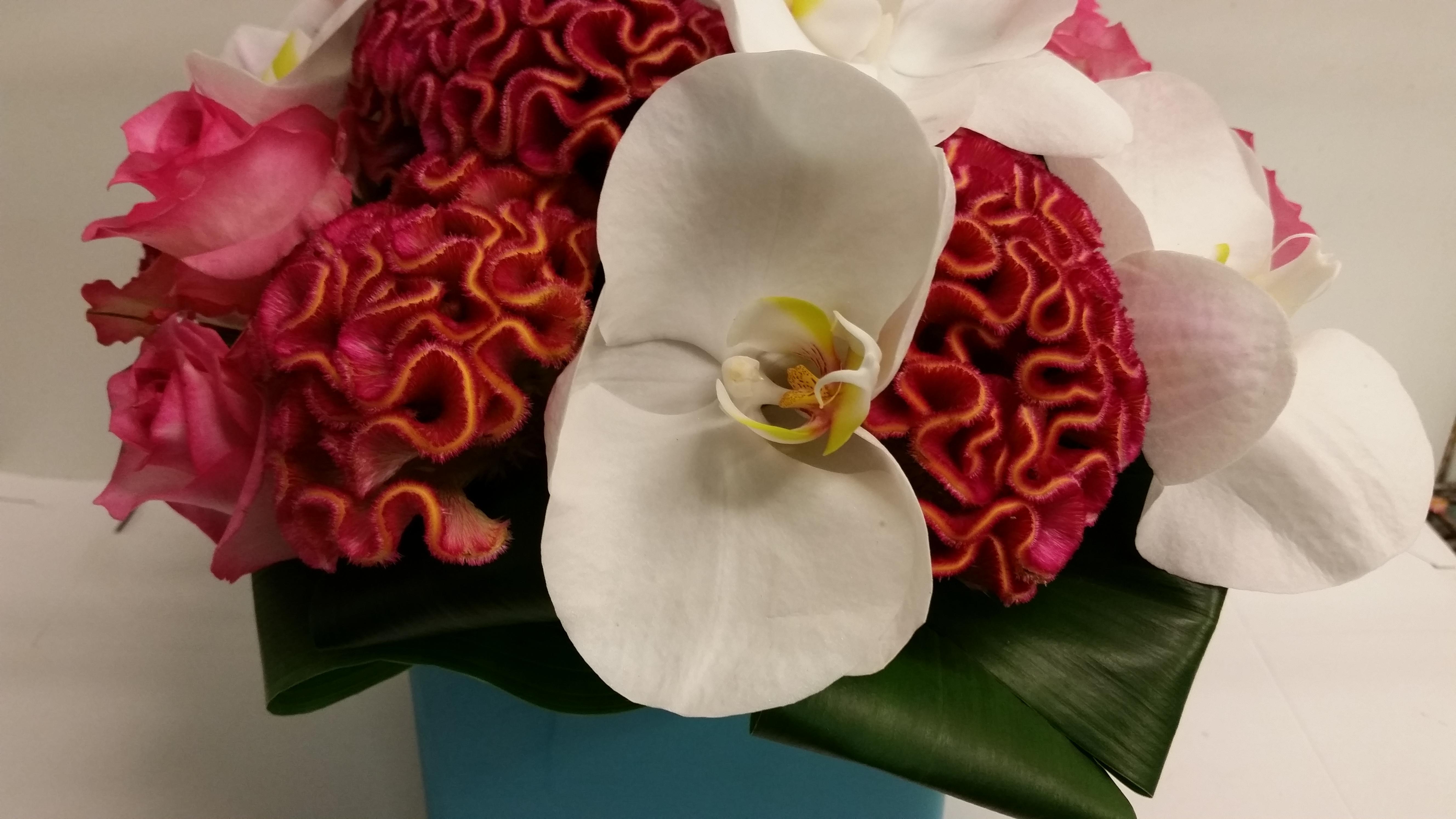 flowersrbaileys image 3