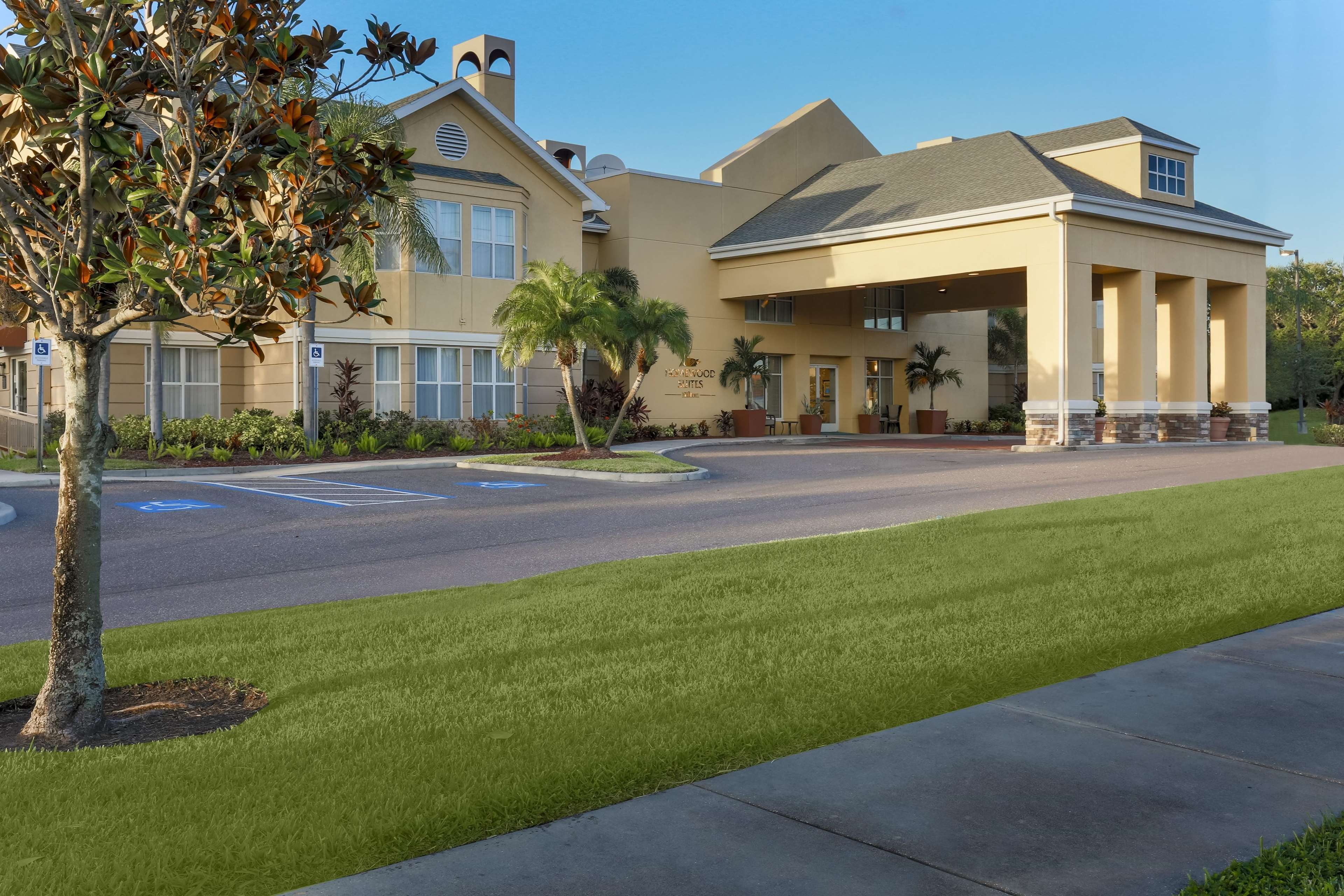 Homewood Suites by Hilton St. Petersburg Clearwater image 15