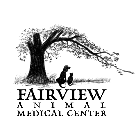 Fairview Animal Medical Center image 0